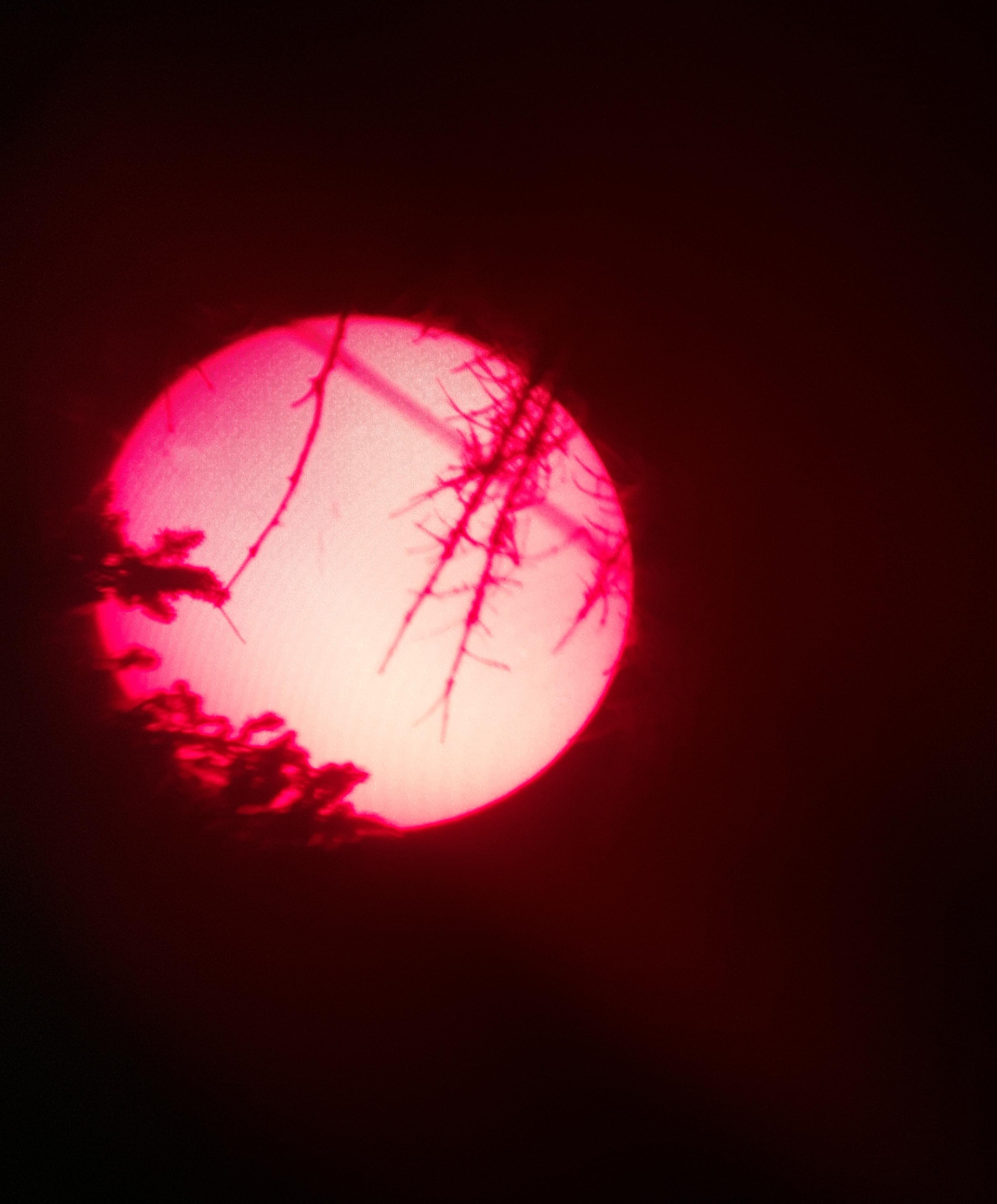 Sunset08112015_1